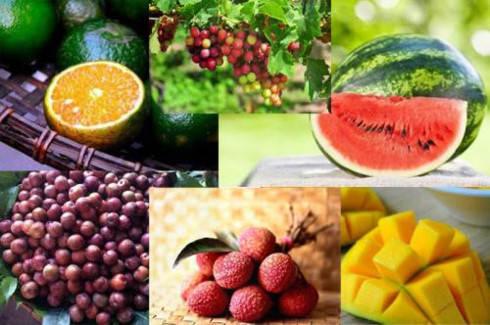 Vietnam spends US$ 600 million on importing fruits, veggies