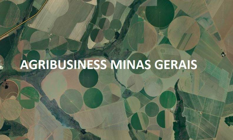 Agribusiness MG