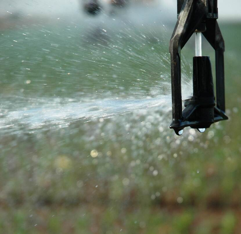 Close-up photo of a sprinkler watering a field