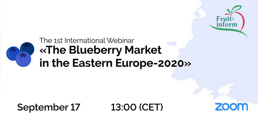 2020.09.17 - Blueberry conference