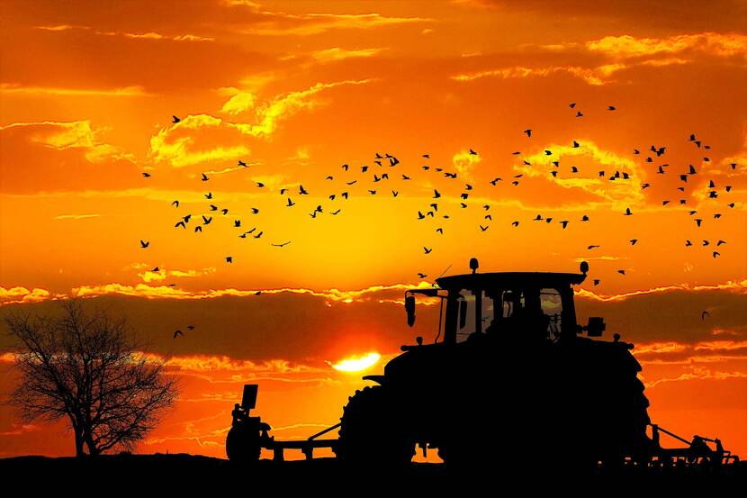 A tractor plowing in a field in front of the backdrop of the setting sun.