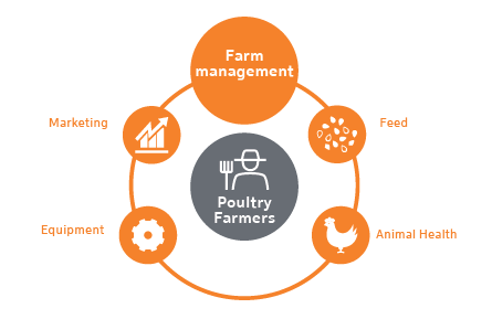 Poultry Impact Cluster | Tanzania | Agroberichten Buitenland