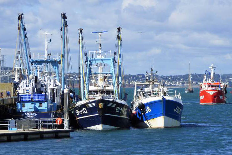 Fishing Boats: Trawlers at Brixham in Devon, UK.