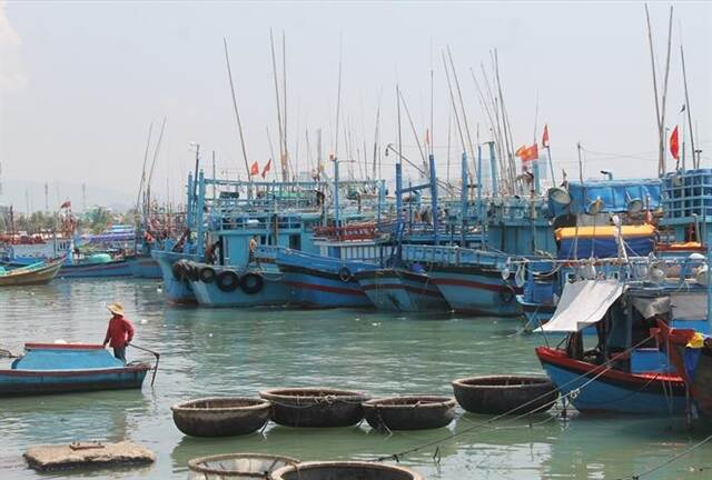 Fishing boats  in  Nha Trang City