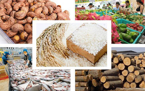 Vietnam's agriculture products for export