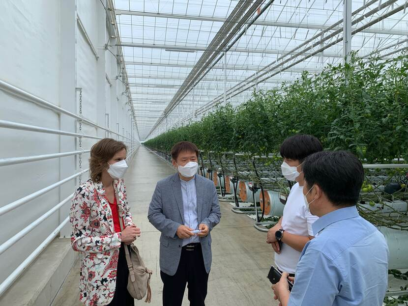 Opening semi-closed greenhouse in Buyeo
